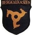 Emblema de la Legión SS Norcaucásica.