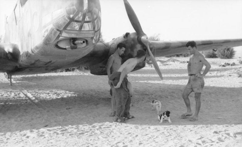 """Tres soldados italianos de las Compañías Motorizadas Italianas juegan con dos perritos bajo la sombra de uno de sus aviones de reconocimiento Caproni Ca.309 """"Ghibli""""."""